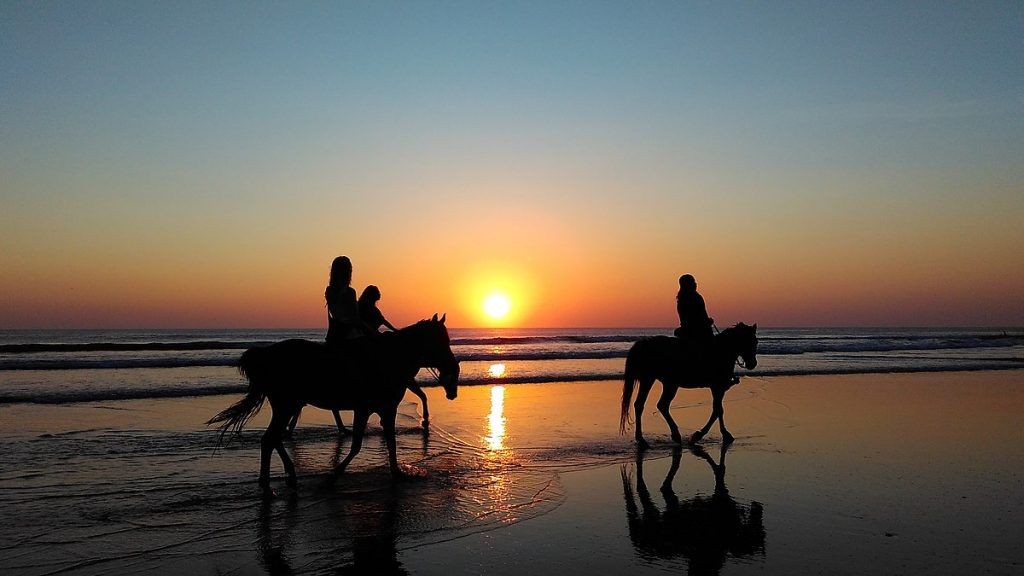 8. Take an evening horse ride – for the ultimate sunset.