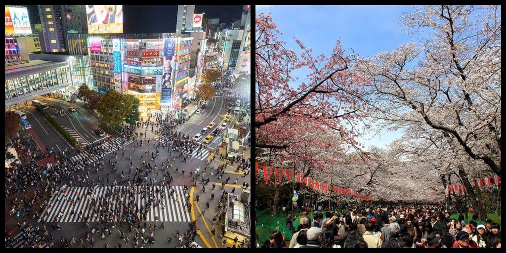 Japan Bucket List: 10 things to do in Japan before you die.