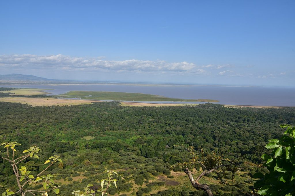 Experience the wilderness at and beyond Lake Manyara Tree Lodge in Tanzania – for nature lovers