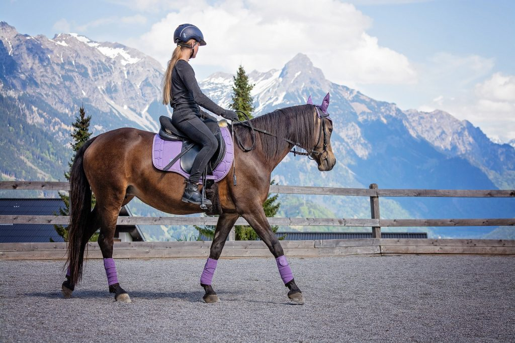 Horseriding has an elegant image but it is actually very dangerous.