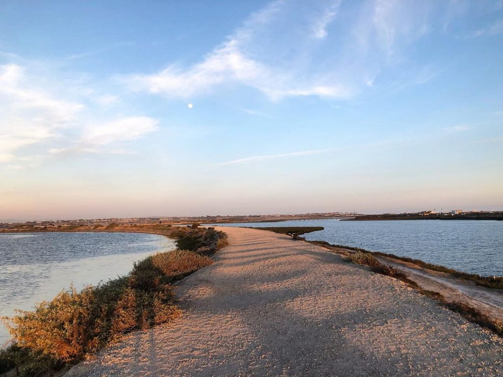 Bolsa Chica Ecological Reserve is a family friendly hike.