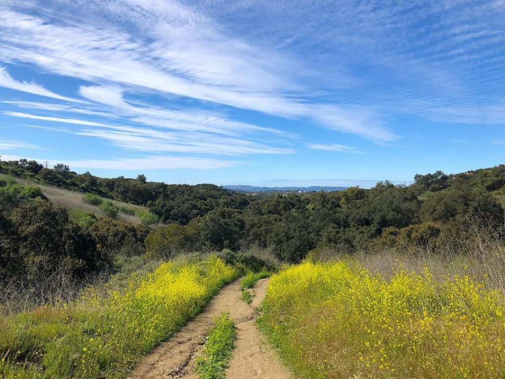 Whiting Ranch Hiking is home to challenging treks.
