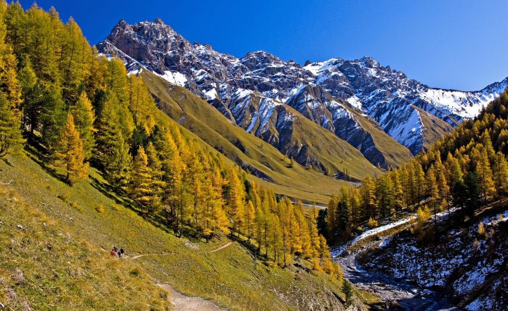 The Val Trupchun Hiking Trail is incredible.