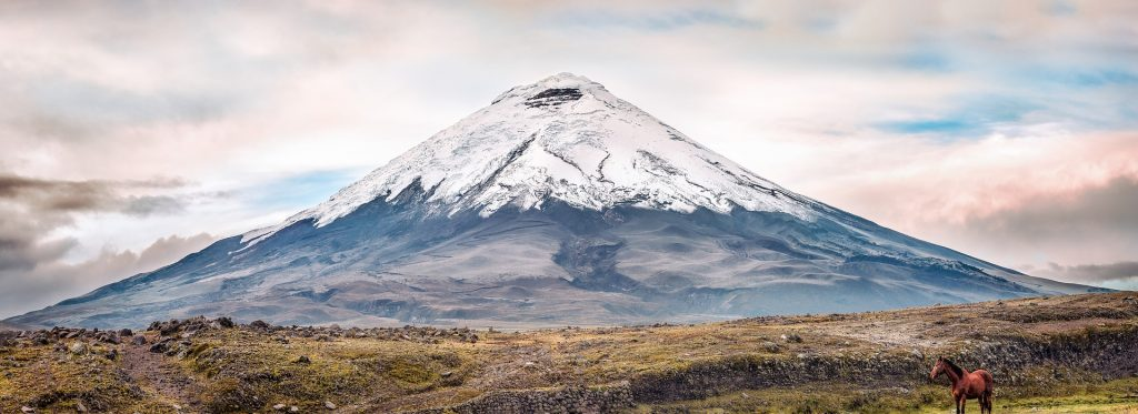 Delve into nature at Cotopaxi National Park.